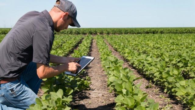 Agricultura selecionará mais de 12 adidos agrícolas para reforçar presença no exterior