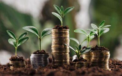 Brasil e Alemanha selecionam projetos de bioeconomia